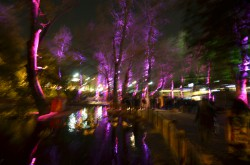 Lichtwind Kugulu Park Ankara Buether Pankrath 33